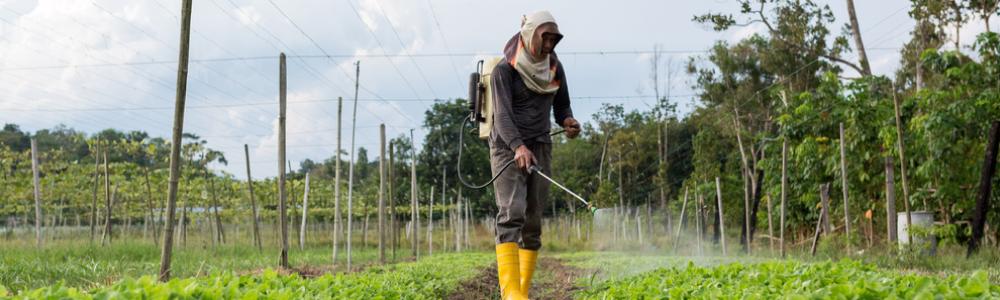 pesticides-on-food
